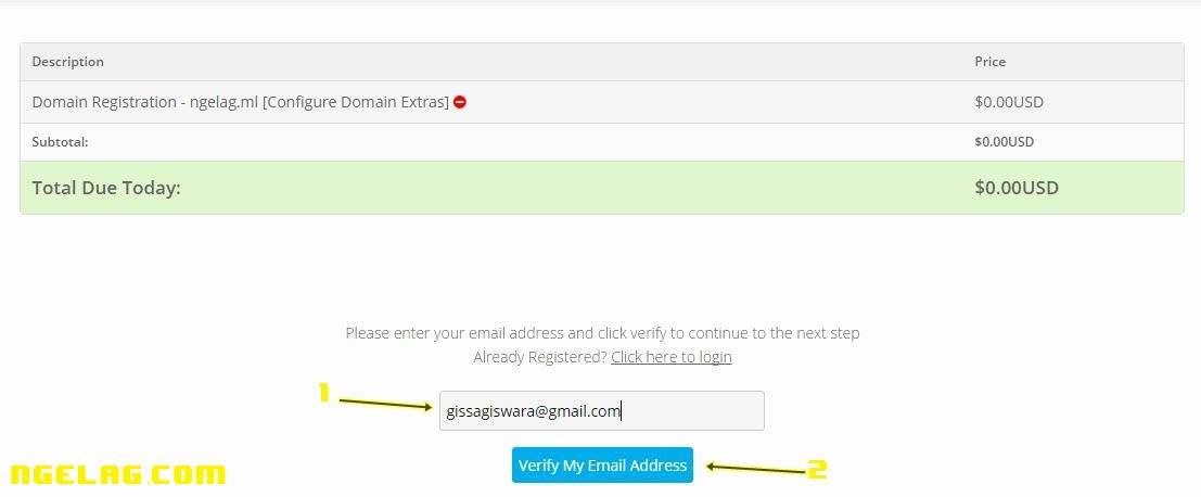 Cara Membuat Website Gratis Dan Mudah Untuk Pemula - Mendaftar domain gratisan 5