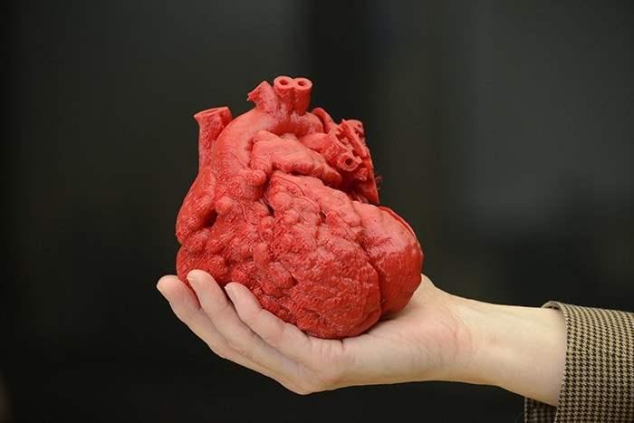 Jantung Tiruan Rencananya Akan Dibuat Menggunakan Printer 3D ngelag.com