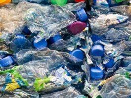 Ilmuan Temukan Bakteri Pengurai Sampah Plastik Bakteri Ideonella sakaiensis adalah