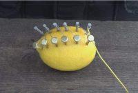 Ternyata Jeruk Lemon Bisa Menimbulkan Api