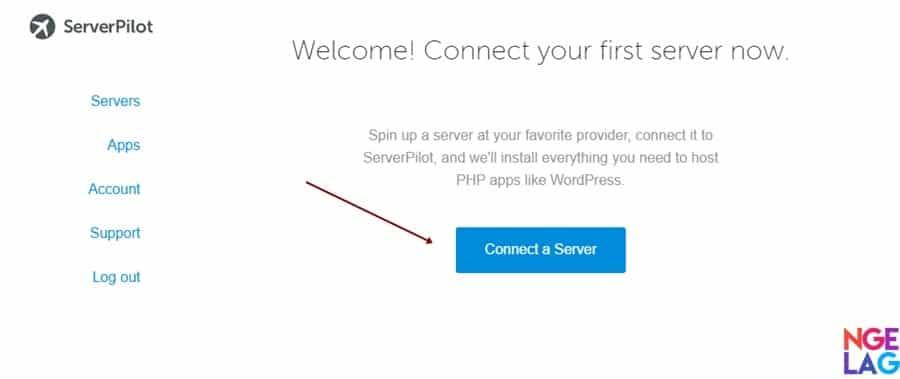 Cara Membuat VPS DigitalOcean Untuk WordPress Menggunakan ServerPilot - Menghubungkan VPS