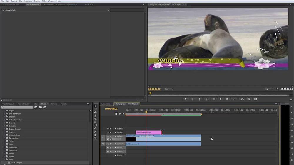 Aplikasi Edit Video Vlog YouTube - Adobe Premier